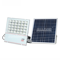 rechargeable solar sensor flood lights suppliers for spotlight-2