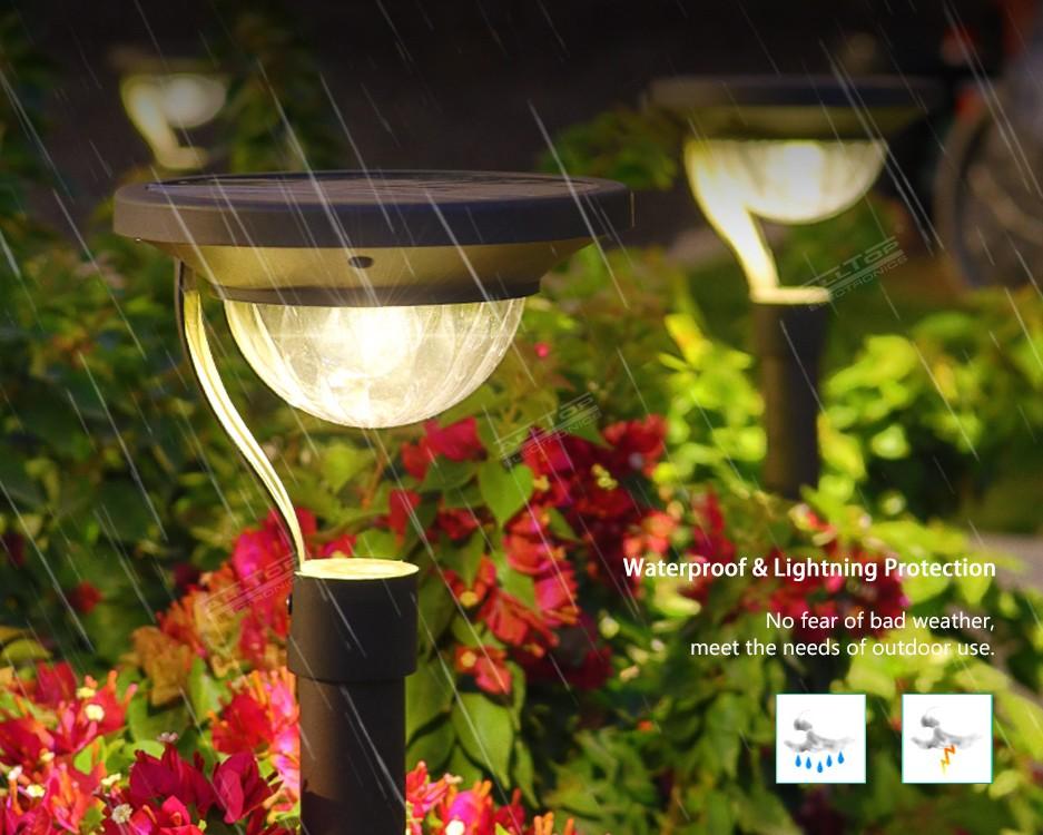 product-ALLTOP High Quality Outdoor Decoration Lights Super Bright Solar LED Garden Lights-ALLTOP -i
